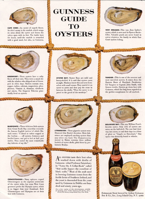 guinness-guide-to-oysters