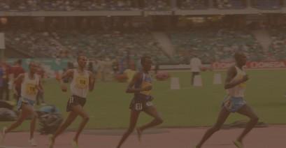 hochleistungssport-bloggen
