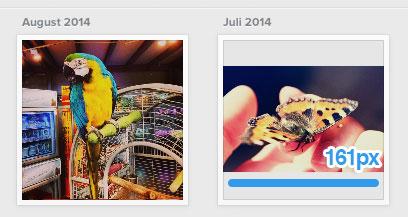 instagram-bildgröße-feed