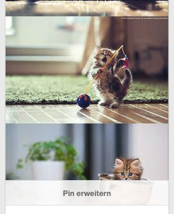 pinterest-bildergröße-pin-erweitern