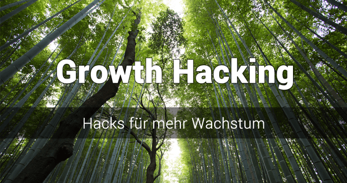 Was ist Growth Hacking? Der ultimative Leitfaden, wie du zum Growth Hacker wirst