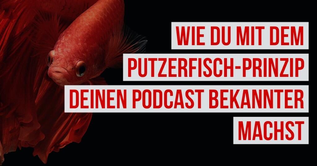 Wie du mit dem Putzerfisch-Prinzip deinen Podcast bekannter machst