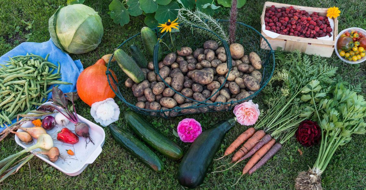 Gute Kohlenhydrate durch Obst und Gemüse