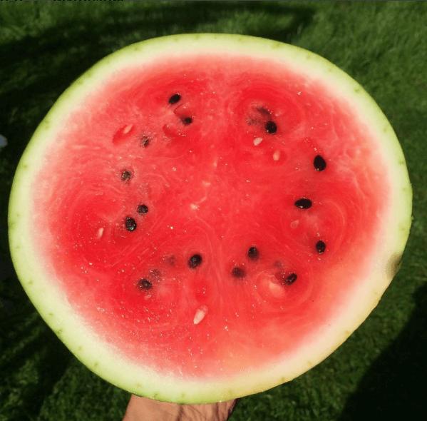 wassermelone kalorien