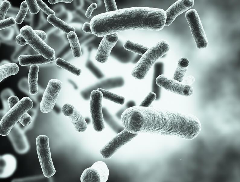 Keime, Gesundheit und was dies mit unserem Immunsystem zu tun hat!?