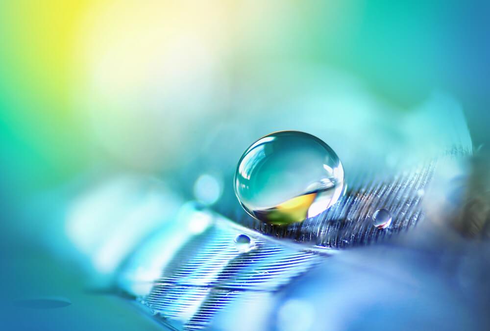 Zum Weltwassertag - Ein interessanter Blick auf unser Lebenselixier