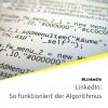 LinkedIn-Algorithmus: Wie er funktioniert und was du tun kannst