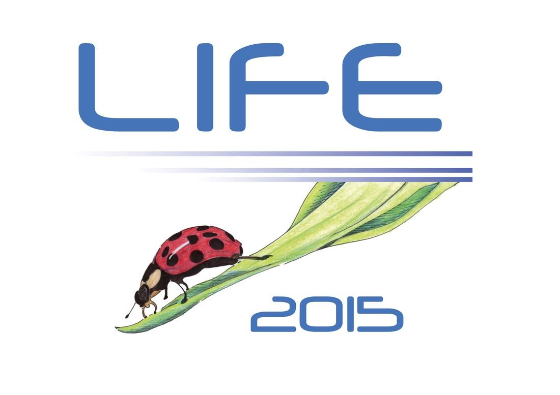 LIFE2015 – Tagung am 12./13. Juni 2015