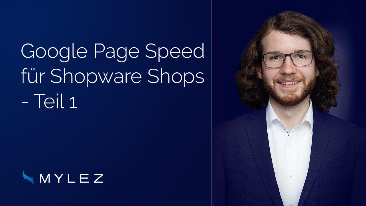 Shopware Performance Optimierung Google Page Speed