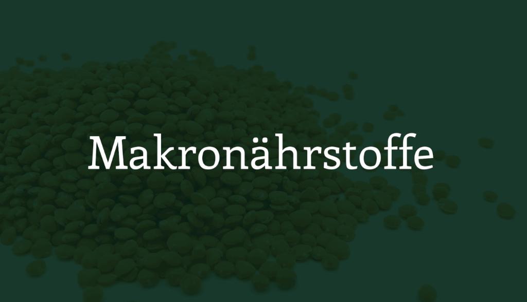 Makronährstoffe - Die ultimative Anleitung