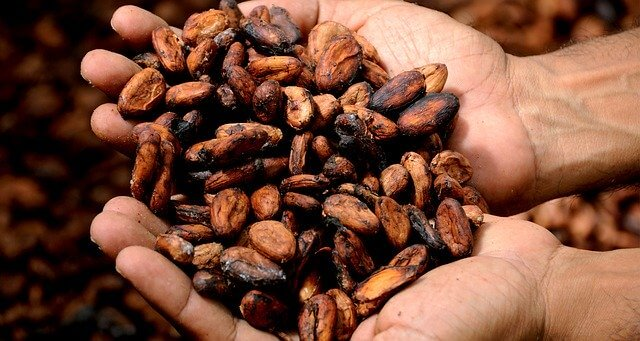 Rohstoffe Kakao