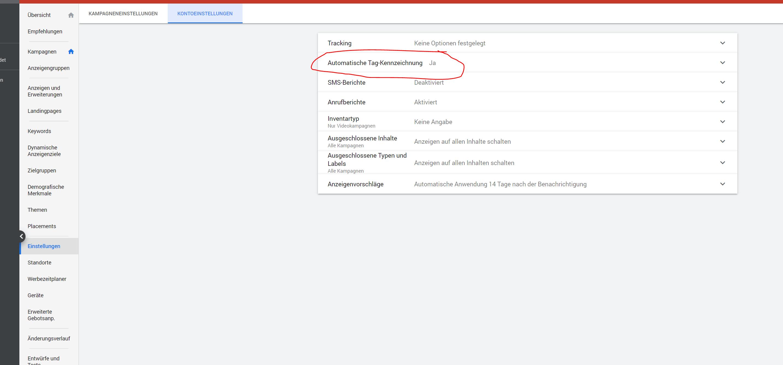 Google Ads Kontoeinstellungen