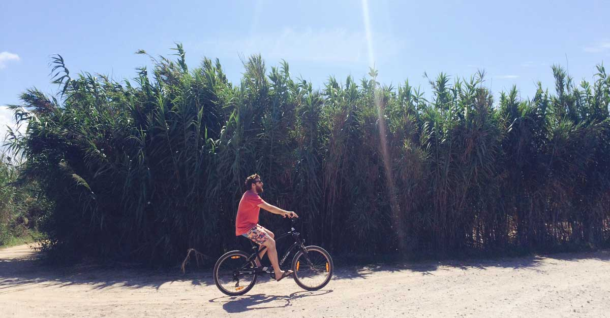 Warum regelmäßiger Urlaub dein Business besser macht