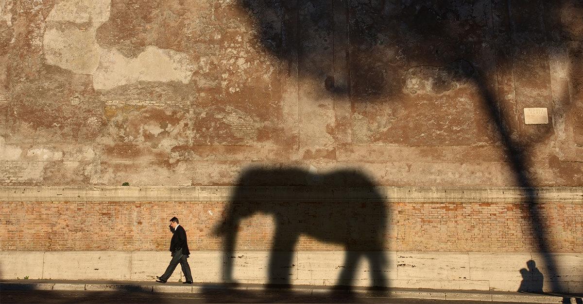 Der Elefant im Online-Shop: Wie kleine Webdesign-Fehler die Kunden verschrecken