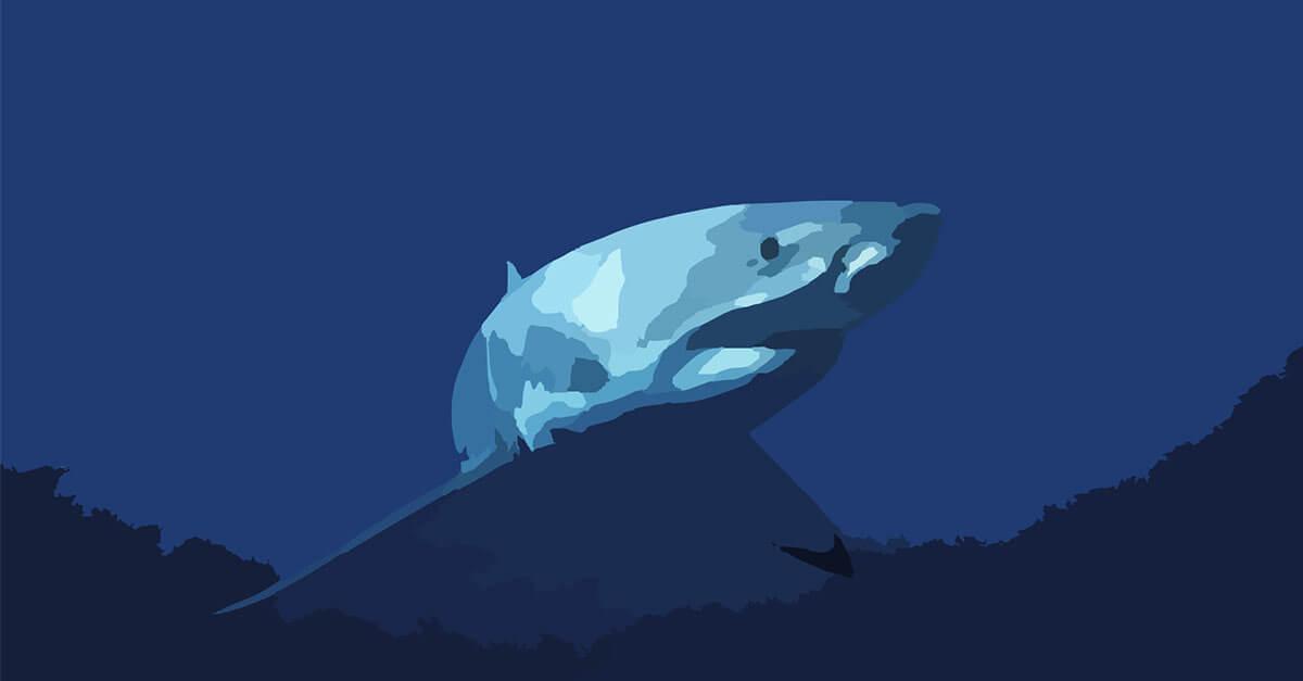 Influencer Marketing: Keine Angst vor großen Fischen