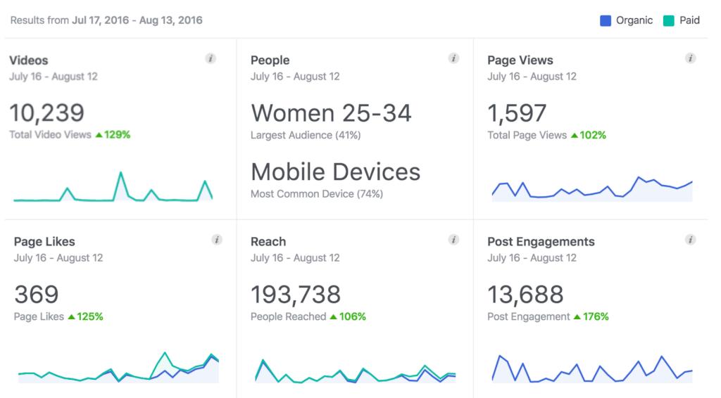 meerdavon facebook statistik dashboard