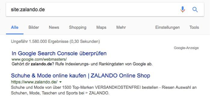 SEO Audit Google Suche indexierte Seiten