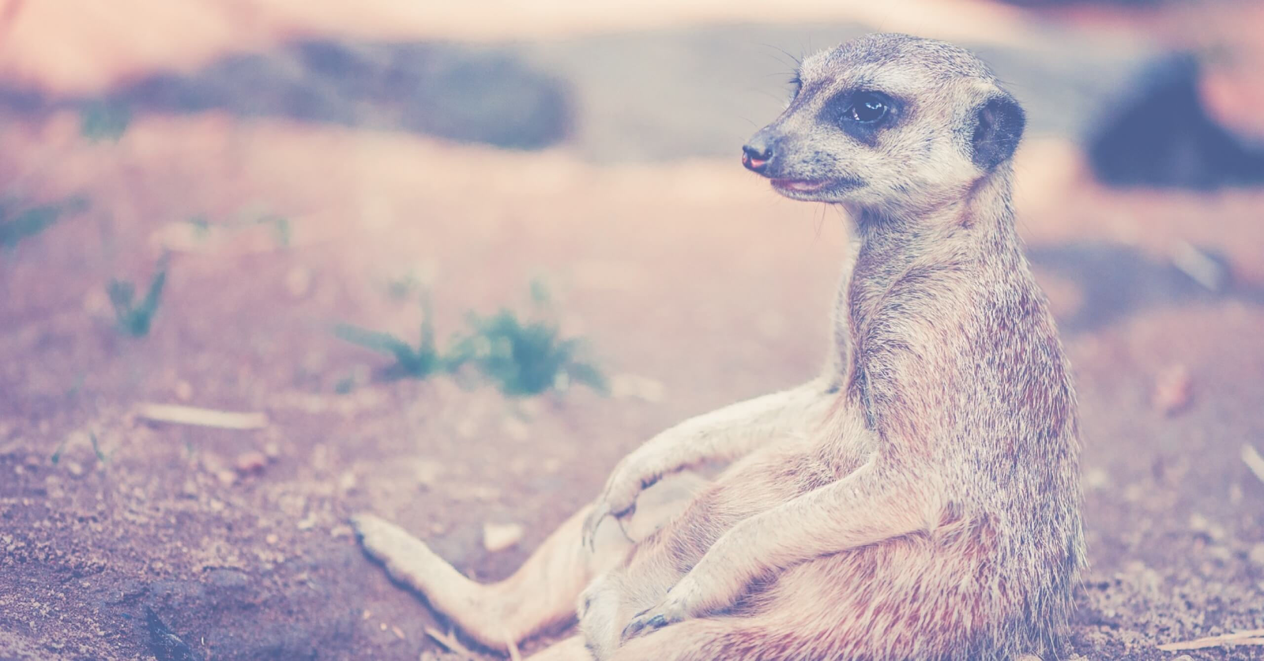 Stress besser wegstecken: So sorgst du in anstrengenden Phasen für Entspannung