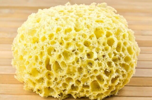 sponge for washing 1212612 640