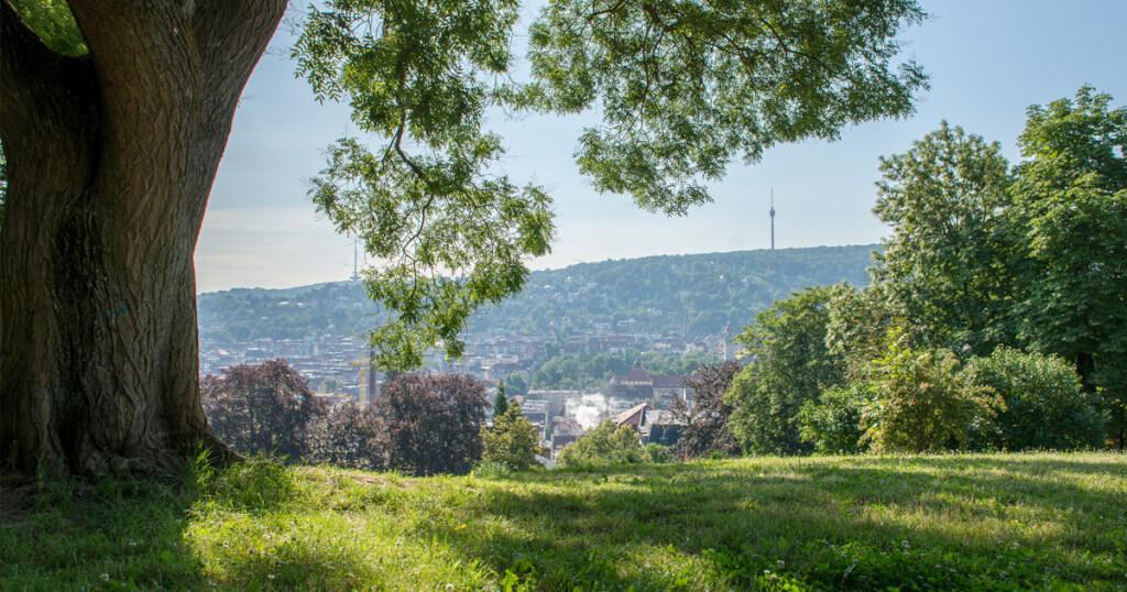 stuttgarter immobilienwelt stadtbezirk stuttgart sued karlshoehe