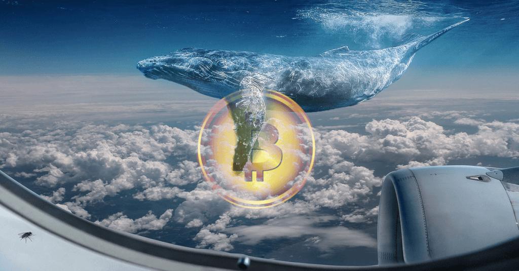 Dicke Fische betreten mit Futures den Bitcoin Markt - Dezember 2017 - Alles gut soweit?
