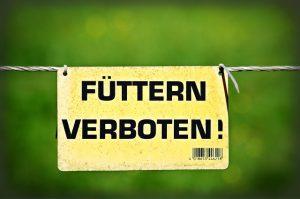 Diefenbach Coaching_essen_niedrig