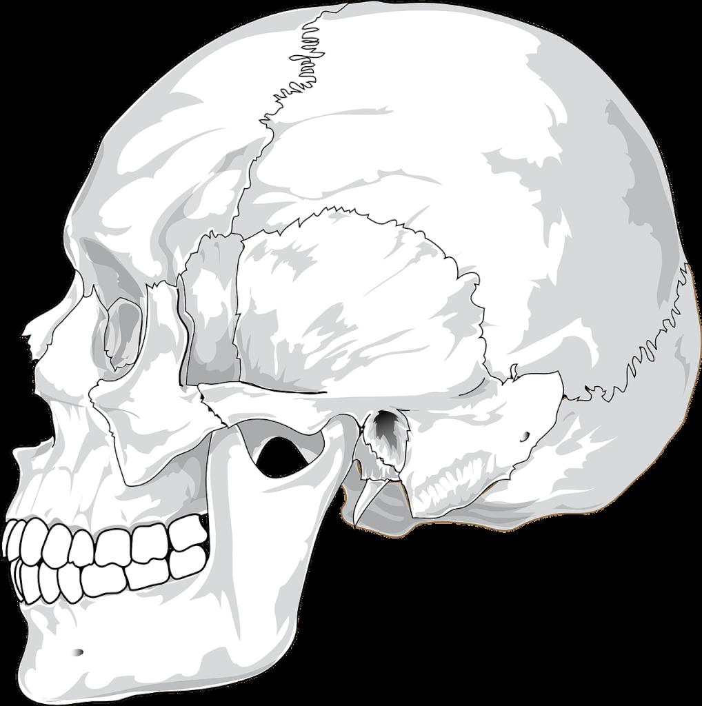 Wie du dein Kiefergelenk selbst untersuchen und Störungen entdecken kannst...