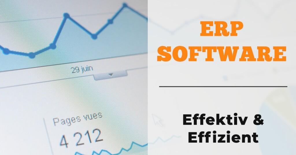 ERP Software Fazit
