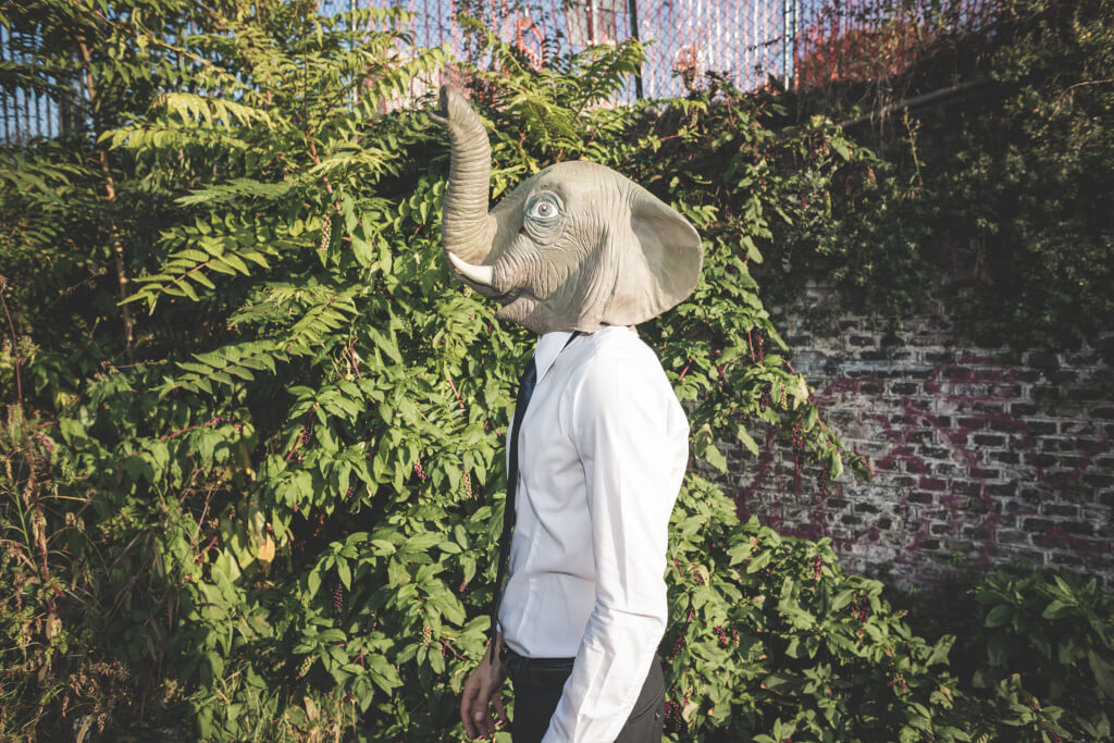 graphicstock elephant mask young handsome elegant blonde model man in the city HTCHUIqJb