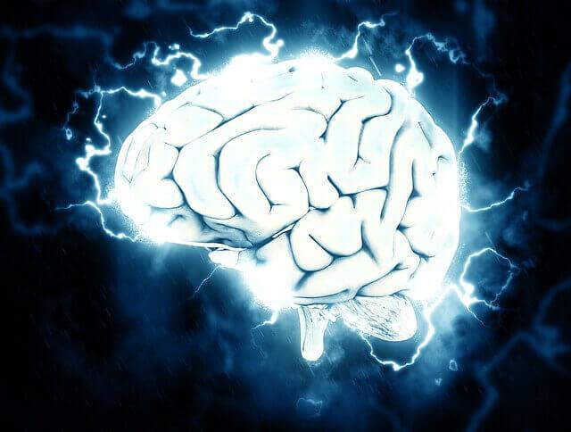 Vegan leben ist eine Gehirnwäsche!
