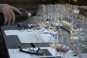 wine-tasting-1324261