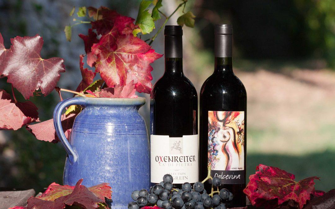Wein-Neulinge aufgepasst! Gängige Missverständnisse, die Du kennen solltest