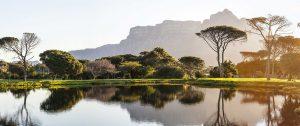 Weinlandschaft in Südafrika