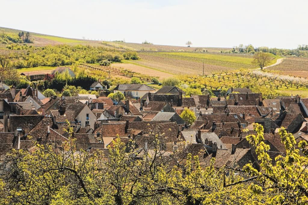 Rotwein Burgund
