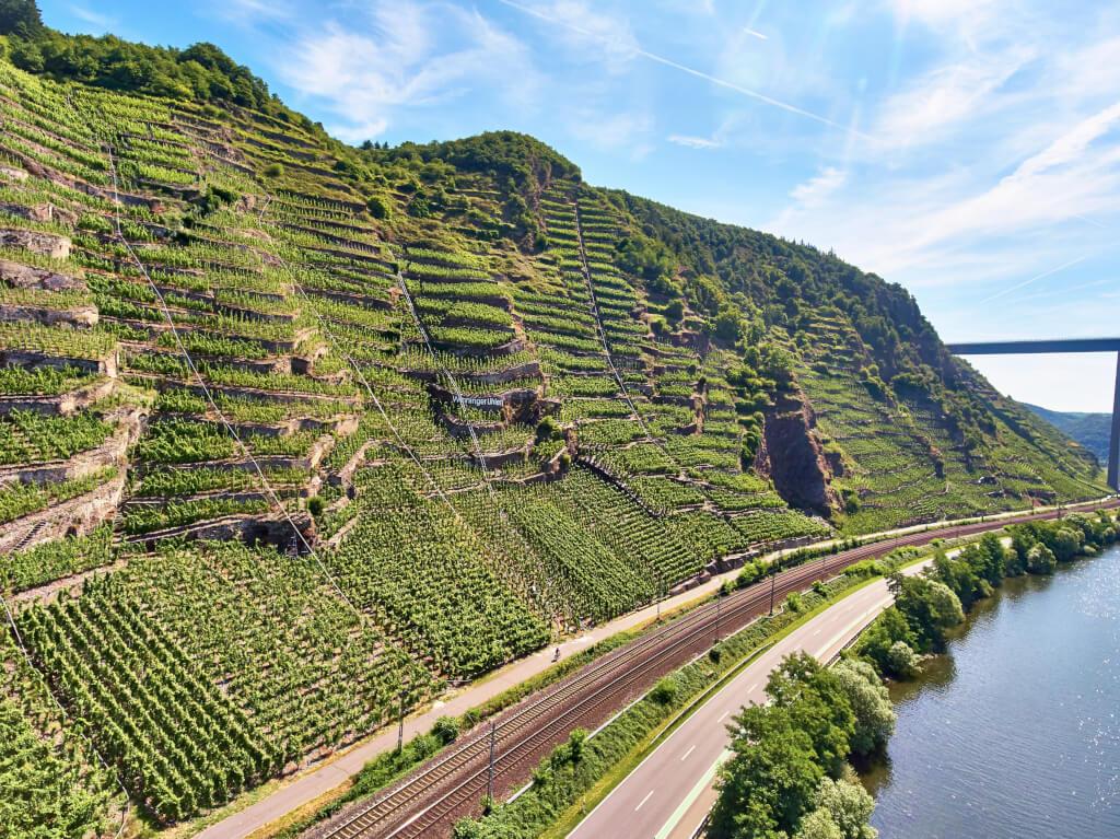 Terrassenmosel - Weinreise zu den Weingütern Lubentiushof, Materne & Schmitt, Heymann-Löwenstein