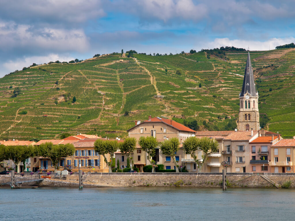 Hermitage Blanc – der ungekrönte König unter Frankreichs Weißweinen