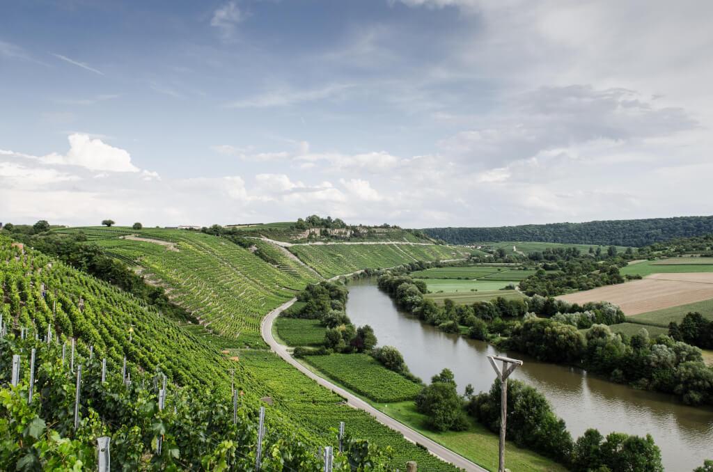 Weingut Lassak 2
