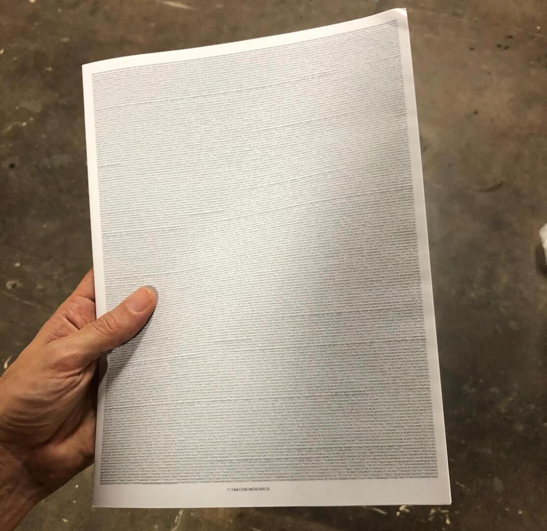 daniel biegler davide balula holding dna pdf