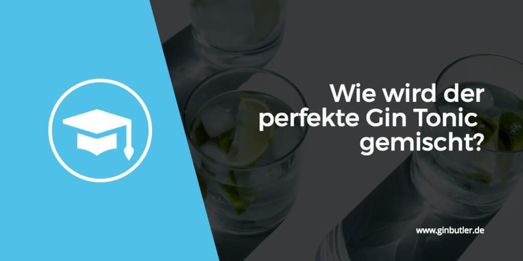 Wie wird der perfekte Gin Tonic gemischt?