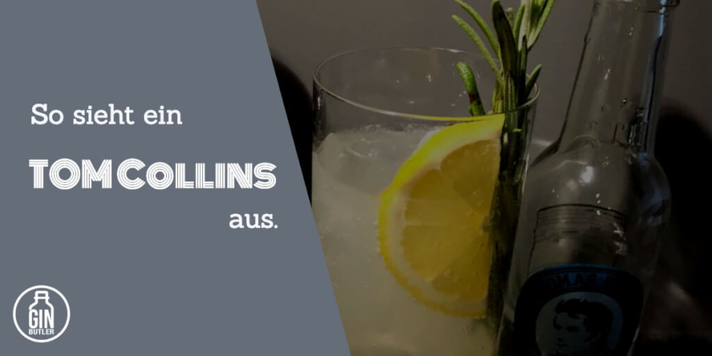 Gin Fizz vs Tom Collins   Tom Collins Bild Gin Cocktail