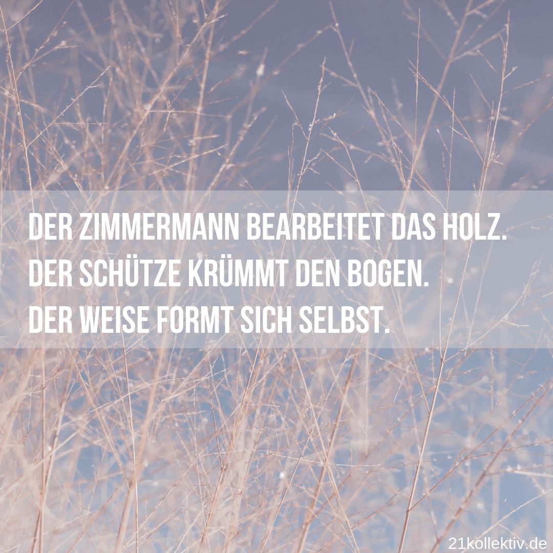 Lebensweisheit zum Nachdenken // 21kollektiv #spruch