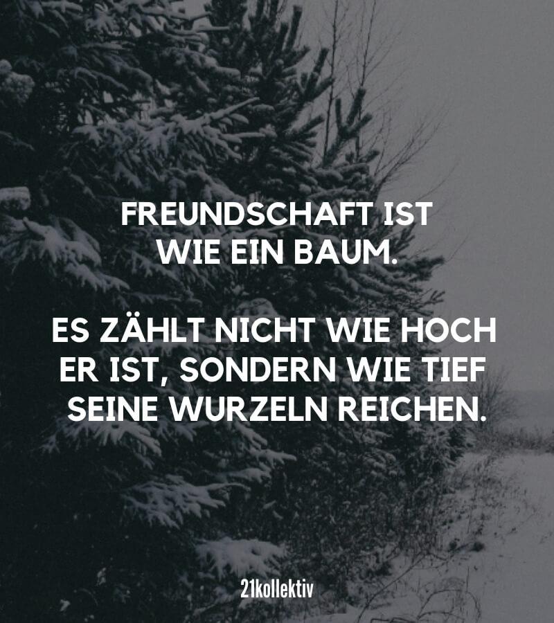 Freundschaft ist wie ein Baum. Es zählt nicht wie hoch er ist, sondern wie tief seine Wurzeln reichen. // Freundschaftsspruch