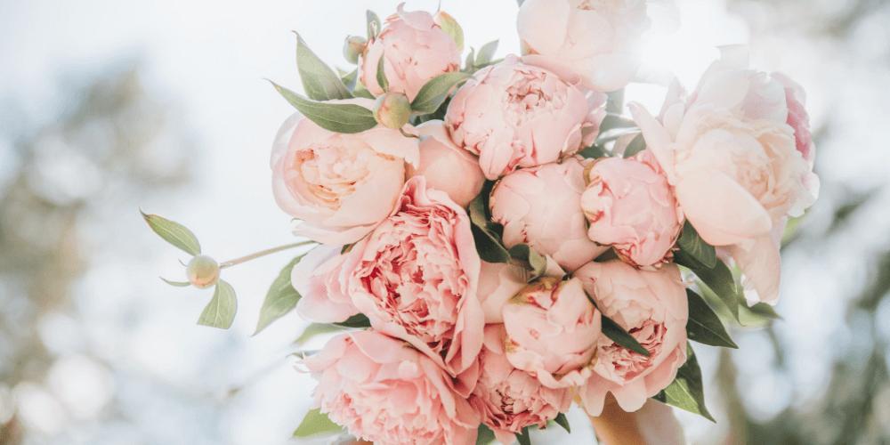 9 Blumen und ihre geheime Bedeutung