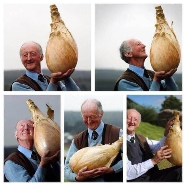 Entdecke 21 Bilder, die dich garantiert glücklich machen werden!