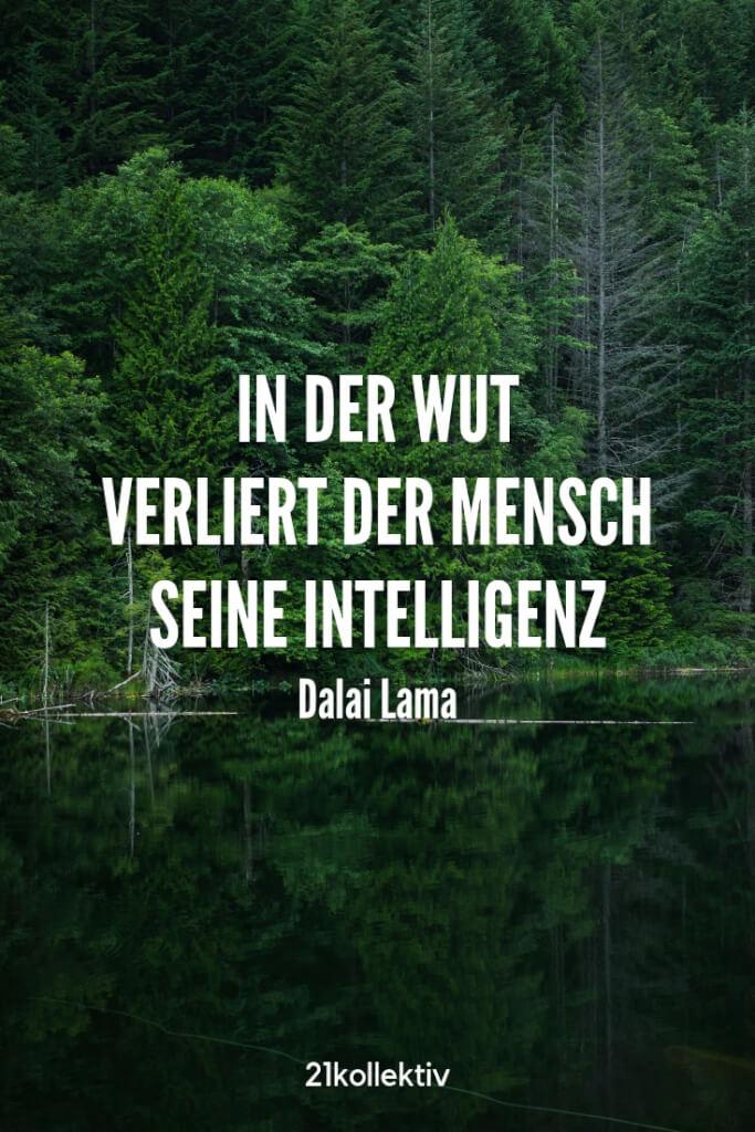 In der Wut verliert der Mensch seine Intelligenz. – Dalai Lama | Entdecke schöne Sprüche, tolle Zitate und inspirierende Weisheiten auf unserem Blog | 21kollektiv