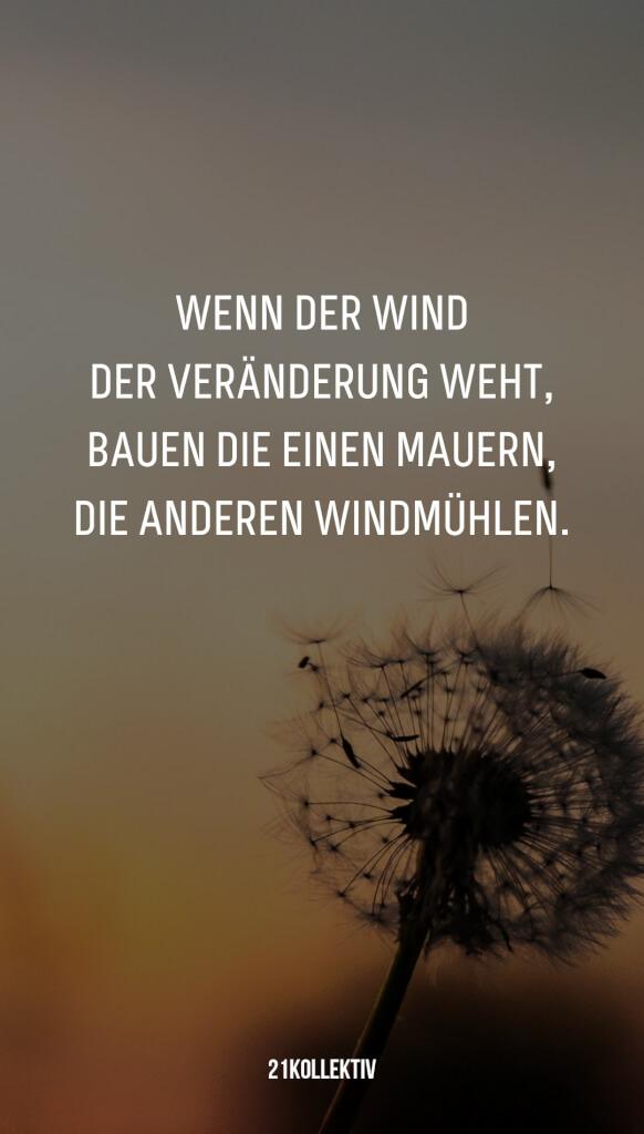 Wenn der Wind der Veränderung weht, bauen die einen Mauern, die Anderen Windmühlen. | 31 beliebte Zitate und Sprüche | 21kollektiv