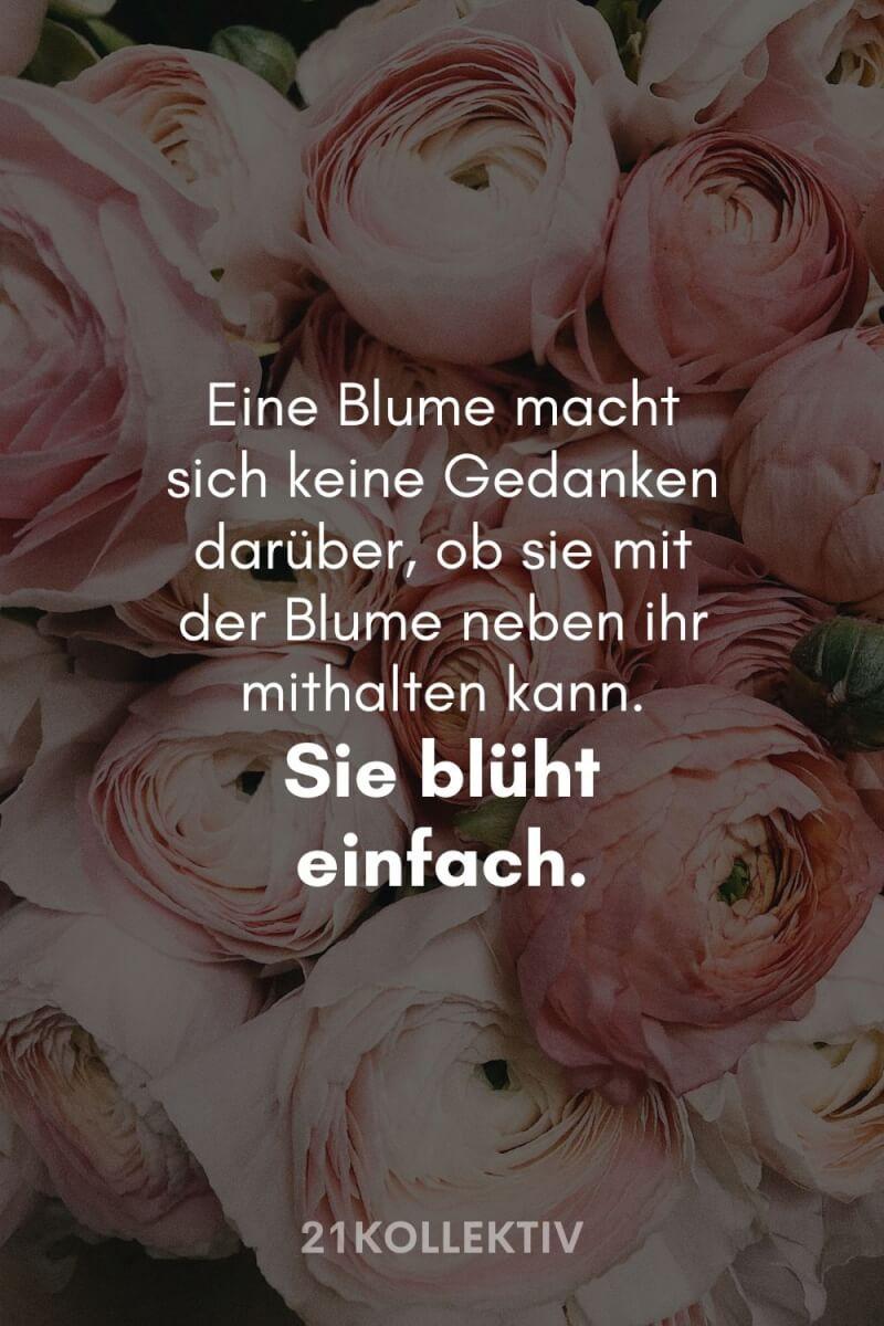 Eine Blume macht sich keine Gedanken darüber, ob sie mit der Blume neben ihr mithalten kann. Sie blüht einfach.