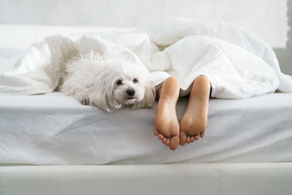 Gesucht: knallfreie Übernachtungsmöglichkeiten oder Orte