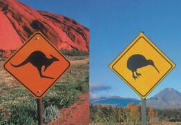 Australien oder Neuseeland – Wohin auswandern?
