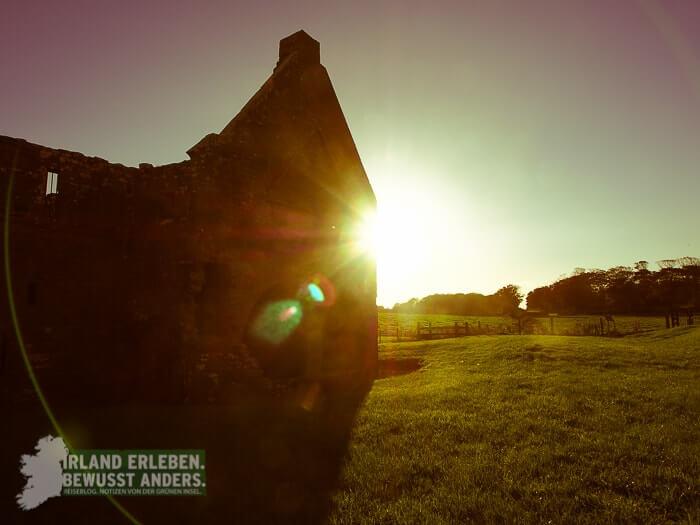 Klosterruinen in Irland